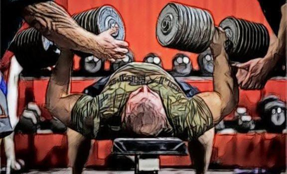 Функции и анатомические особенности мышц спины