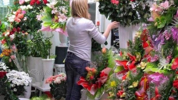 Бизнес-идея: продажа собственных семян
